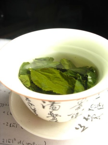 Green tea: So much more than what coffee can offer. CREDIT: WIKIMOL
