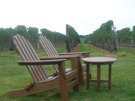 Palmer Winery, Aquebogue, Long Island. [CREDIT: SABINA BORZA]