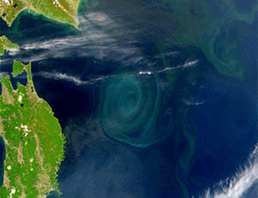 Looking down at the ocean from the Weatherbird II. The large swirl in the middle is an plankton bloom. [CREDIT: SeaWiFS Project/NASA and GeoEYE]