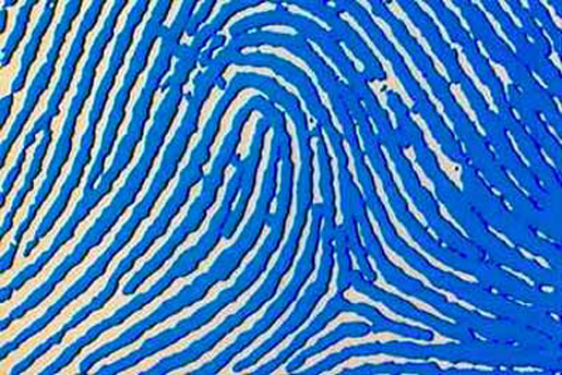 Close up image of a fingerprint. [Credit: Tom Harris].