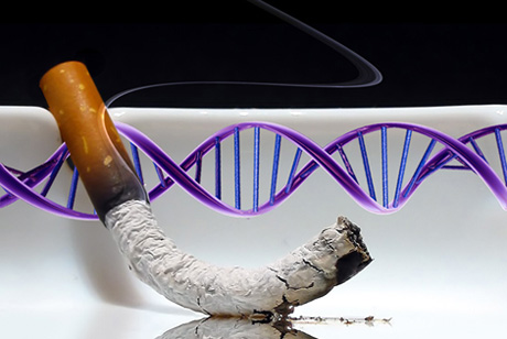 Is the key to quitting in our DNA? [Photos: Juergen Jester, Rodolfo Clix. Compiled by Karina Hamalainen]