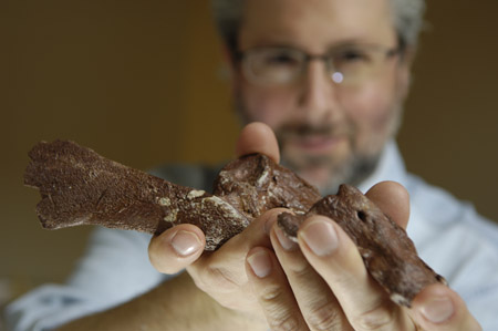 Neil Shubin holds part of a fossil from Tiktaalik roseae, a species that fills the gap between fish and land animals. [Credit: Dan Dry]