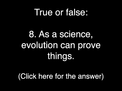 Evolution Quiz 8