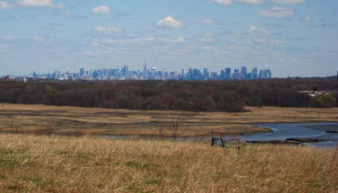 A view of the city from the landfill's north mound. <br>[CREDIT: MOLIKA ASHFORD]
