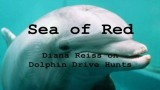Sea of Red: Speaking out Against Dolphin Hunting