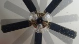 The Truth About Fan Death