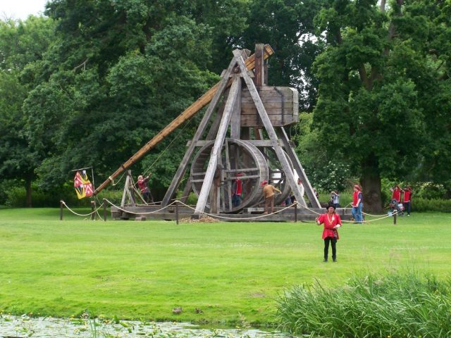 Kids and Catapults