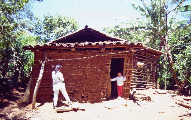 Chagas Disease The Silent Killer Scienceline
