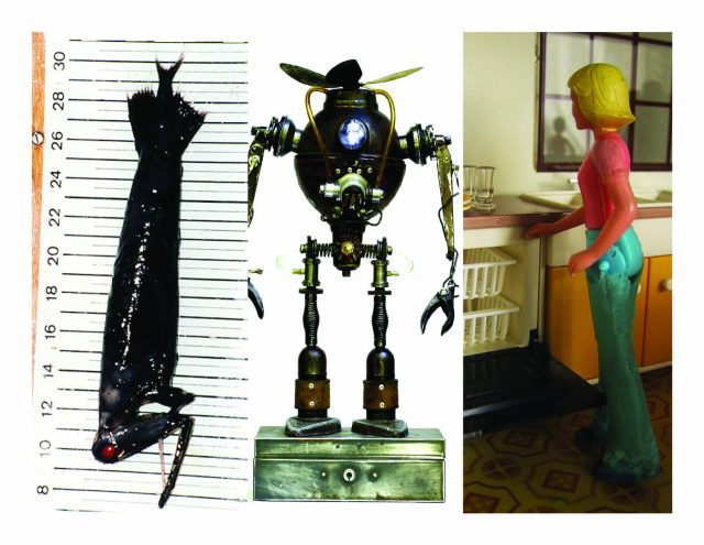 Dolls, thinking machines, and a very bizarre fish