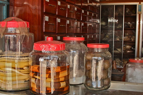 Tiger bones, bear bile, and pangolin scales