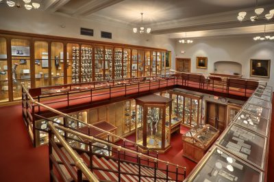 The Mutter Museum of The College of Physicians of Philadelphia. [Image credit: © 2009 George Widman Photography LLC, Licensed for use by the Mutter Museum of The College of Physicians of Philadelphia]