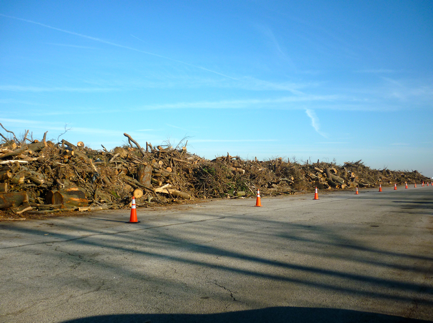 Caption: Around 208,000 cubic yards of woody tree debris are piled up at Floyd Bennett Field. [Image credit: Alexa Kurzius]