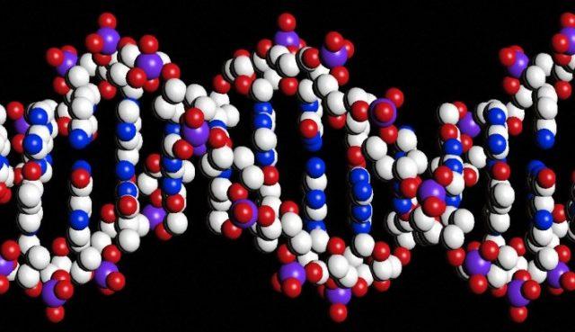 A transformation akin to damaged DNA