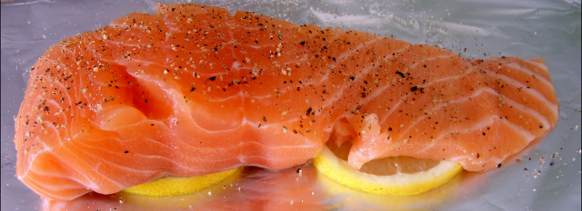 Why is salmon good for your brain?