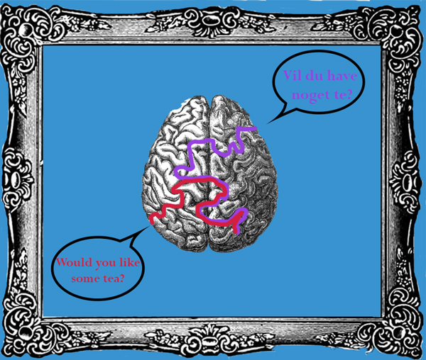 Are bilinguals really smarter?
