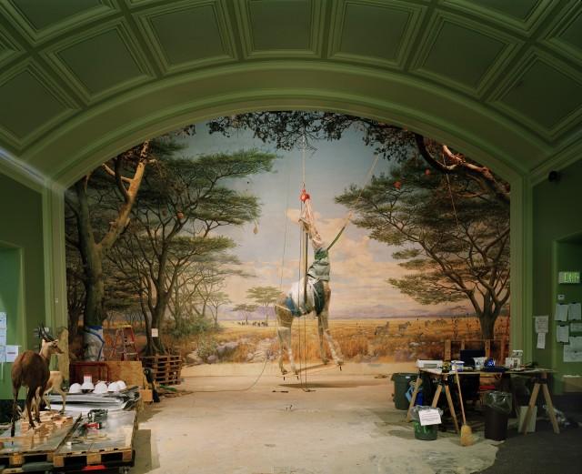 "Richard Barnes, ""Suspended Giraffe,"" 2005, Digital C-print, 48"" x 60."" Courtesy of the artist and Foley Gallery."