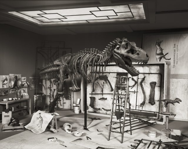 Natural history museums: fact or fiction?