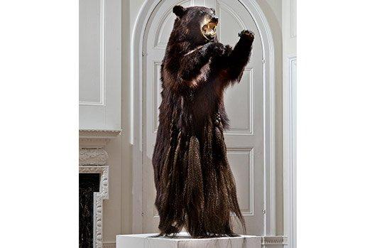 "Hugh Hayden, ""American Hero #5,"" 2014, Braided taxidermy American black bear (Ursus americanus). Photo credit Stefan Hagen."