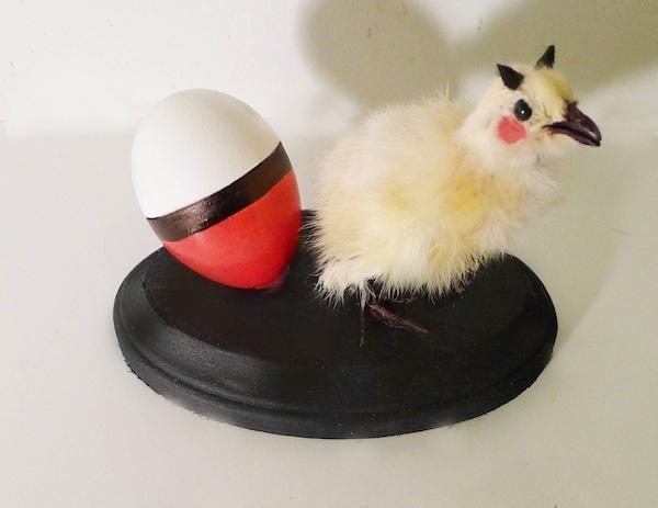 """Chick-achu,"" one of Anantharaman's creations [Image Credit: Divya Anantharaman]"