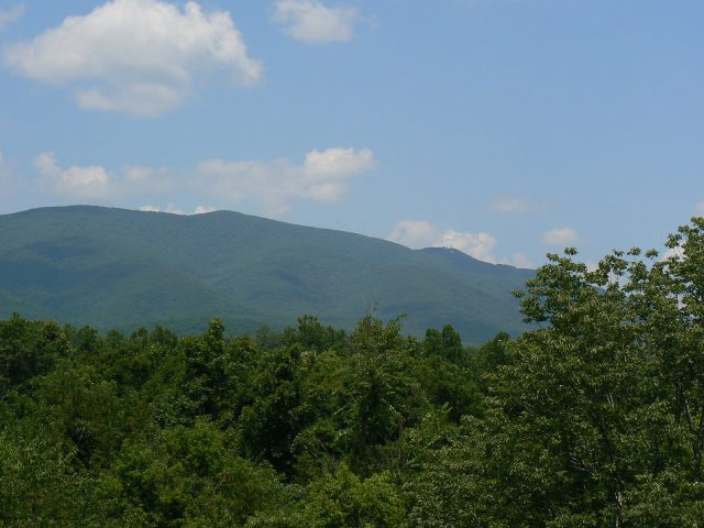 Scene from George Washington National Forest [Image credit: Mongo | CC BY SA-3.0]