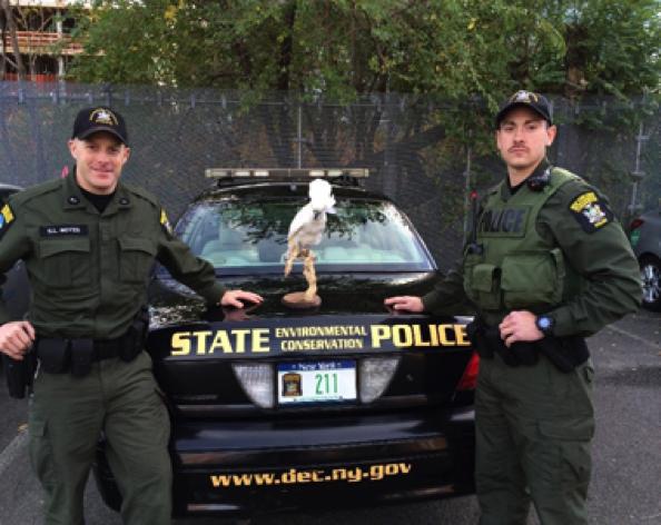 wildlife cops are prepared for the most unpredictable species