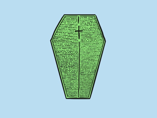A diatom (a type of green algae) in the shape of a coffin.