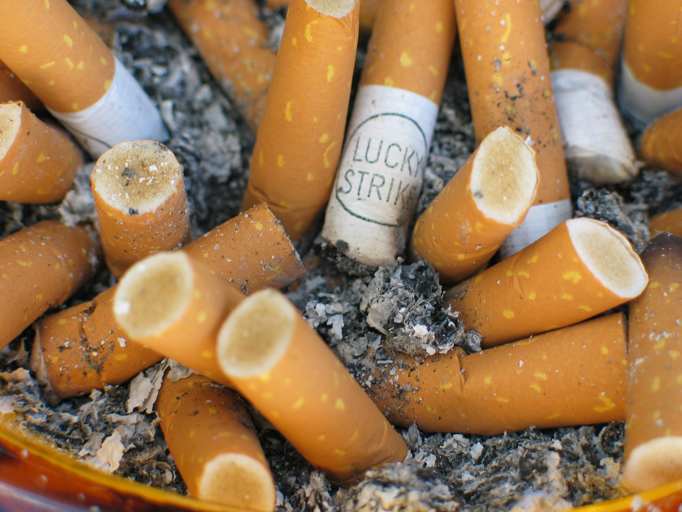 A closeup of an ashray packed with orange cigarette butts.