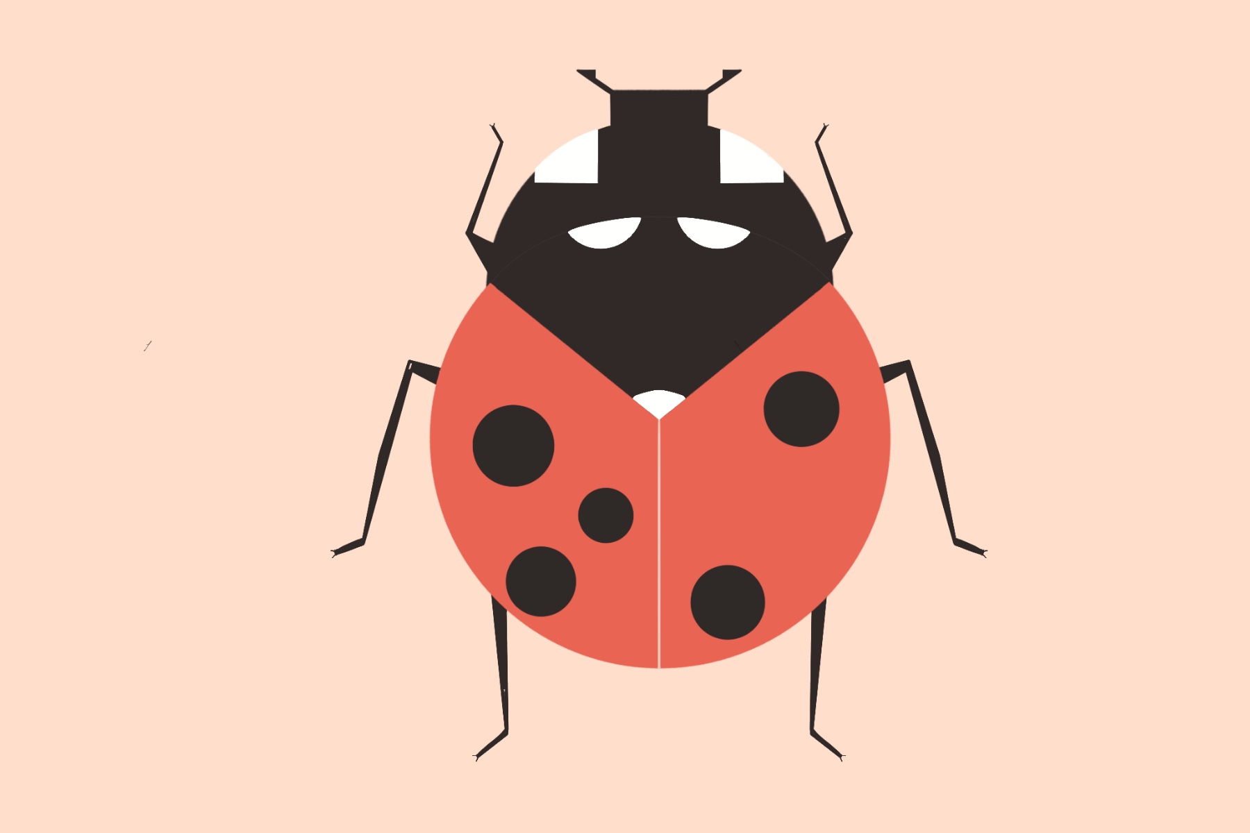 Graphic of a ladybug