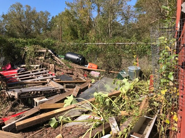 Wallace-Singleton's farm was ruined by four feet of water during Hurricane Florence